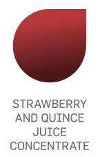 Erkon - Strawberry and Quince Juice concentrate